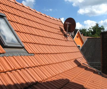 Unser Dach am Nachmittag. Foto: Alice Scheerer