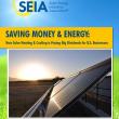 SEIA-Report Solarthermie Fallstudien