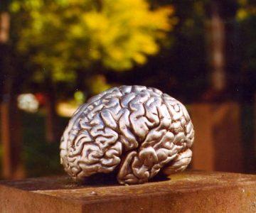 Gehirn Silber Intelligent