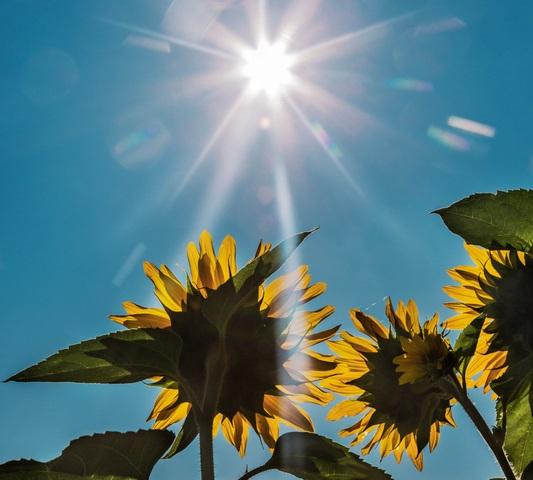 solare-prozesswaerme-teil1