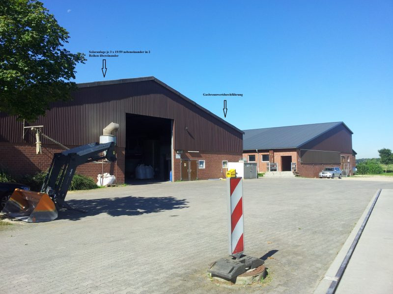 solare Prozesswärme für Schweineaufzuchtbetrieb