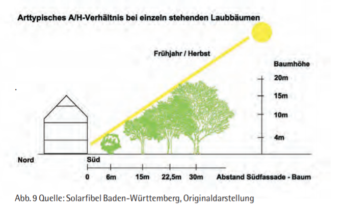 Solarfassade Laubbäume Abstände