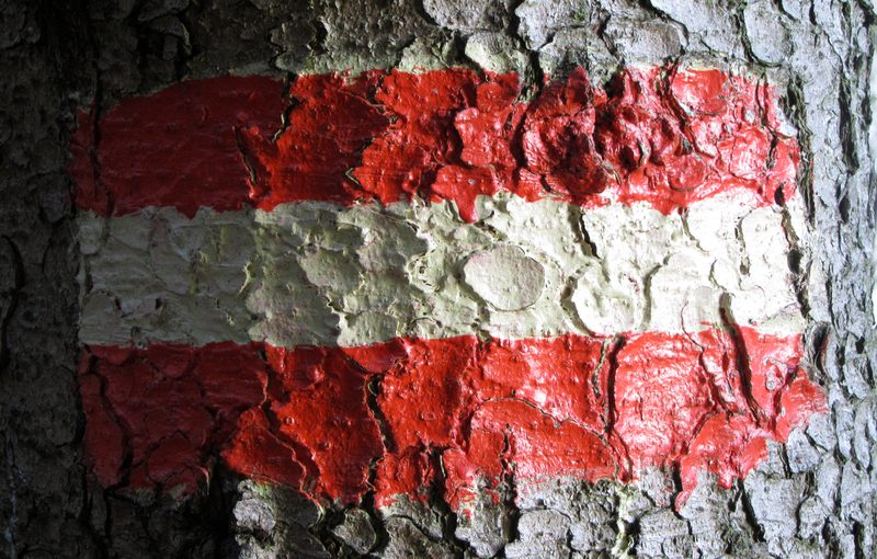 Flagge Österreich Marktstudie Erneuerbare 2017