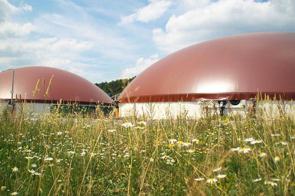 Naturstrom_AG_Kraftwerke_Biomasse_Hallerndorf1_OEkobiogasanlage_72dpi