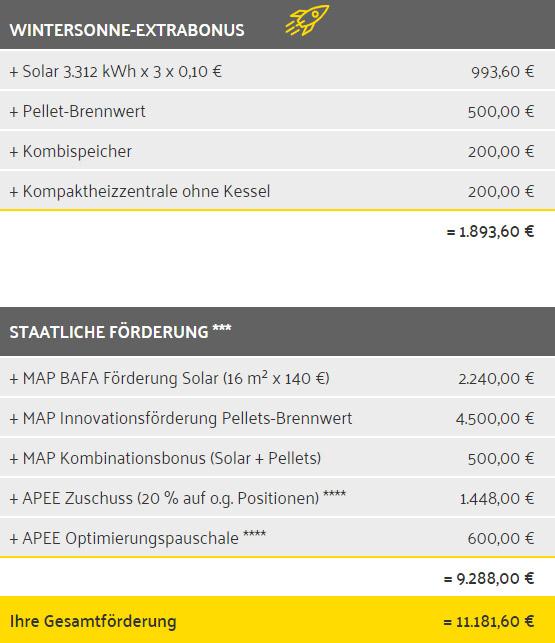 Soalrheizung Förderbeispiel Aktion Wintersonne BAFA APEE