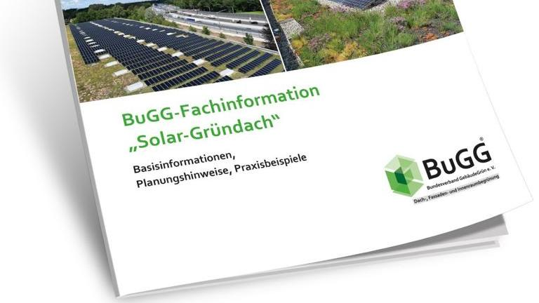 Gründach mit Solarthermie-Anlage