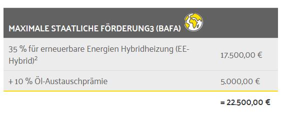 Aktion Wintersonne ParadigmaMaximale Förderung BAFA