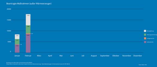 BAFA-Antragszahlen Januar Februar 2021_Beantragte Maßnahmen (außer Wärmeerzeuger)
