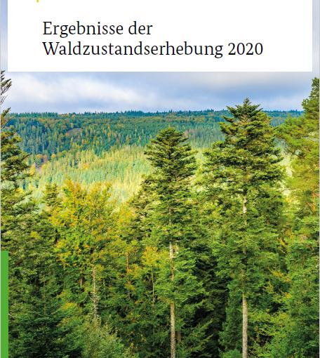 Krankenakte der deutschen Wälder Waldzustandserhebung 2020